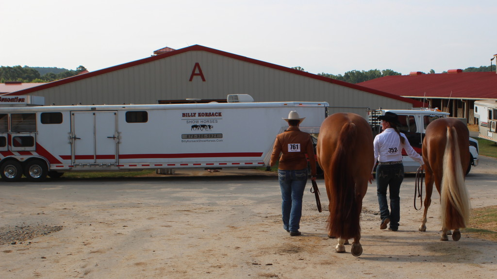 Showing with Billy Korsack Show Horses - good friends, good times & good horses!